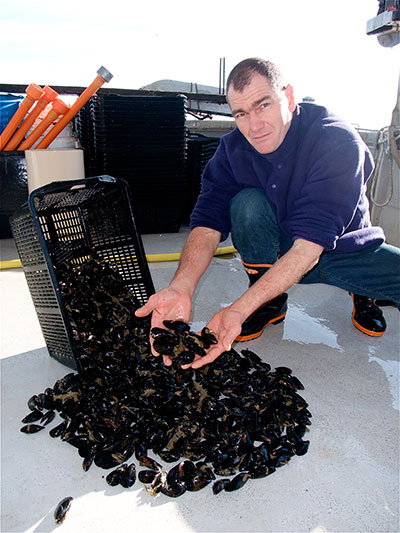 Cervia's mussel BIO